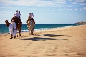 이집트에서 낙타타기