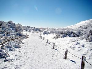 겨울 제주도 한라산 등반하기