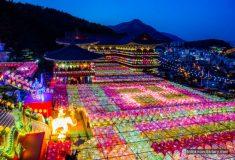 삼광사 연등축제 다녀오기