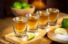멕시코에서 최고의 데킬라 마시기
