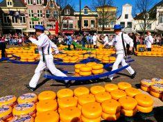 네덜란드 알크마르에서 치즈 구입