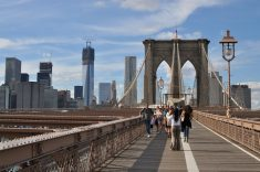 뉴욕 브루클린 다리 위 걷기
