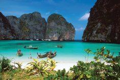 영화 더 비치의 배경인 피피섬 여행