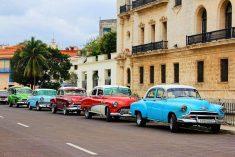 쿠바에서 올드카 타고 사진찍기